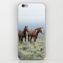 Wild Horses - Steens No. 1 iPhone Skin