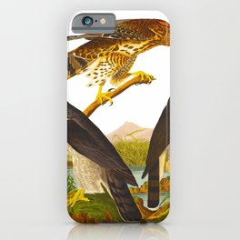 Goshawk Bird iPhone Case