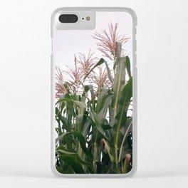 Cornrow Clear iPhone Case