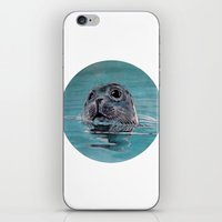 seal iPhone & iPod Skins featuring seal by ARTito