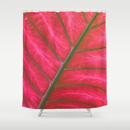 Fine Art Candy Apple Red Leaf Art Photo Shower Curtain