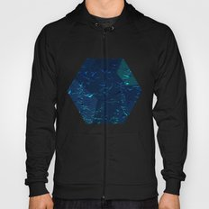 Icy Hexagons Hoody