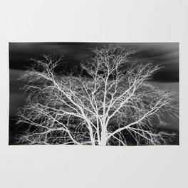 White Branch Night Wind Rug