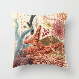 Great Barrier Reef Echinoderms from The Great Barrier Reef of Australia (1893) by William Saville-Ke Throw Pillow