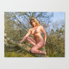 Nude Woman On A Tree Canvas Print