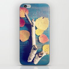 Autumn Birch Leaves and Twigs iPhone Skin