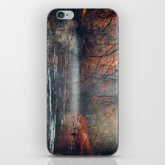 between fall & winter iPhone & iPod Skin