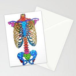 Vertebral Stationery Cards