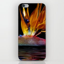 Out of the Depths... iPhone Skin