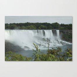 Plants at the Falls Canvas Print