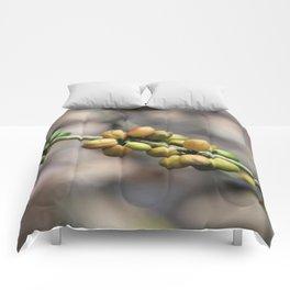 Illustration Coffee Beans Comforters