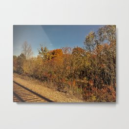 Autumn Adventures Metal Print
