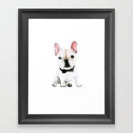 Little Gentleman Framed Art Print