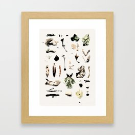 Abstract Nature Ingredients Framed Art Print