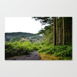 Deception Pass Bridge on Whidbey Island Canvas Print