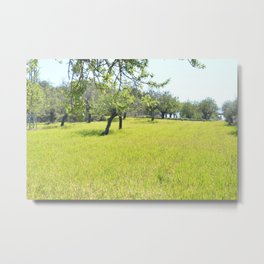 in the nature, in the summer Metal Print
