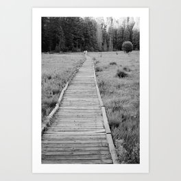 Walkway To The Woods Art Print