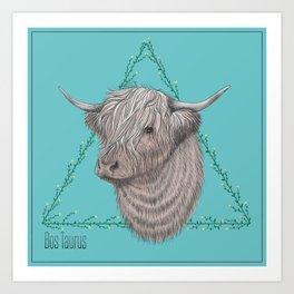 Bos Taurus Art Print