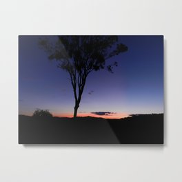Colours of the Afternoon Metal Print