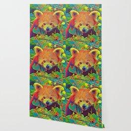 AnimalColor_RedPanda_001_by_JAMColors Wallpaper