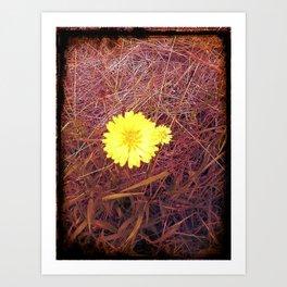 passion..yellow..love..beauty Art Print