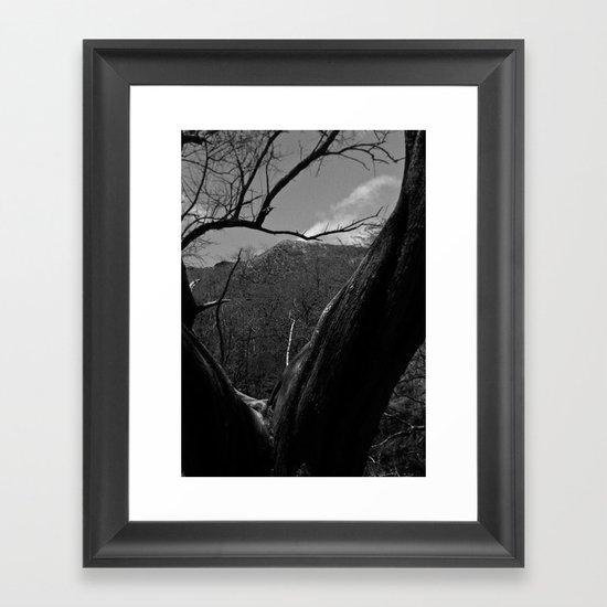 Split Tree Framed Art Print