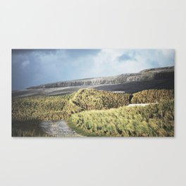 Tuft and Stone - Landscape Photography Canvas Print