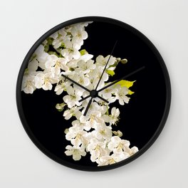 Cherry Flowers On Black Background #decor #society6 #buyart Wall Clock