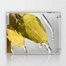 Dripping Ice Laptop & iPad Skin