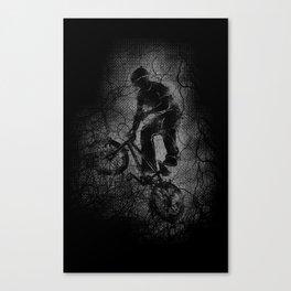 x3m  Canvas Print