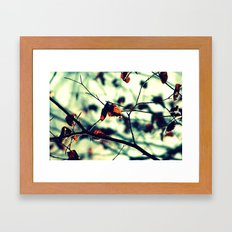Aqua Leaves Framed Art Print
