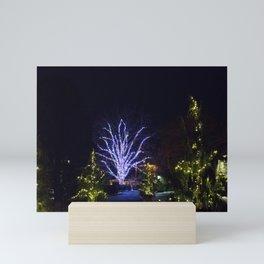 Longwood Gardens Christmas Series 120 Mini Art Print