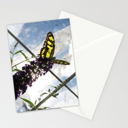 Malachite Butterfly Stationery Cards