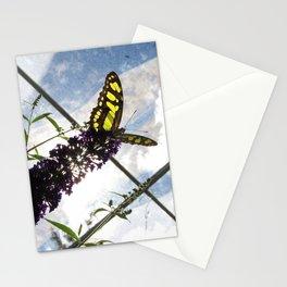 Malachite Butterfly Stationery Cards