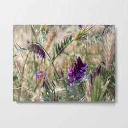 Field flowers Metal Print