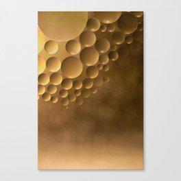 Many moons. Canvas Print