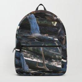 Elk front Backpack
