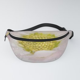 Chrysanthemum flower with water droplets Fanny Pack