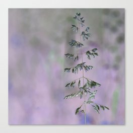 Grass invers Canvas Print