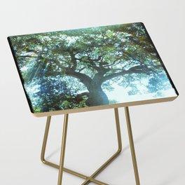 Ramona Oak Tree Side Table