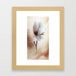 Magnolie -magnolia Framed Art Print