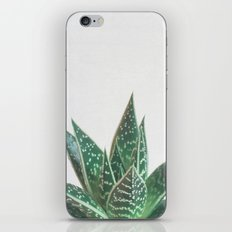 Aloe Tiki iPhone & iPod Skin