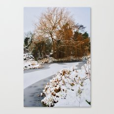 The Old Mill Stream in Winter Canvas Print
