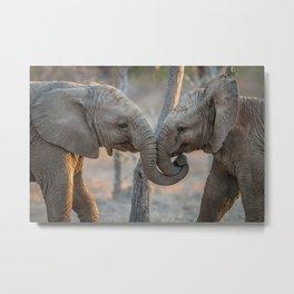 Elephants cuddling Metal Print