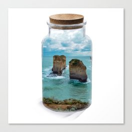 Bottled apposle Canvas Print