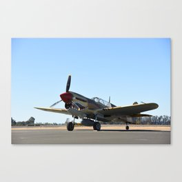 P-40 Trainer Canvas Print