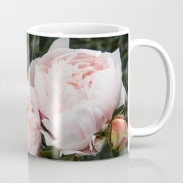 Flower Photography | Peonies Cluster | Blush Pink Floral | Peony Coffee Mug