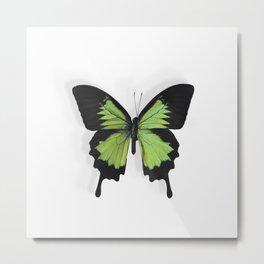 Botanical Bufferfly Green Metal Print