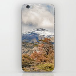 Forest and Snowy Mountains, Patagonia, Argentina iPhone Skin