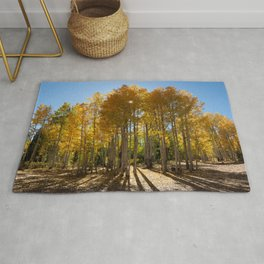 Autumn Blaze outside of Crested Butte, Colorado for #Society6 Rug